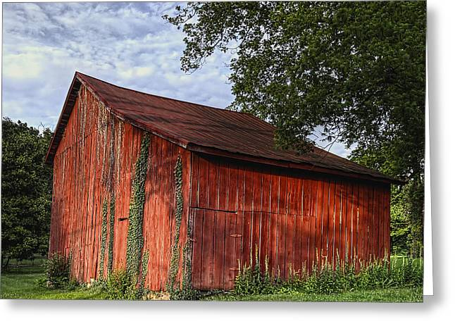 Red Buildings Greeting Cards - Barn at Avenel Plantation - Bedford Va Greeting Card by Steve Hurt