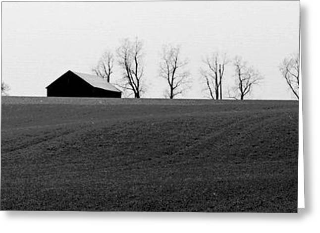 Indiana Trees Greeting Cards - Barn Horizon Greeting Card by Michael L Kimble