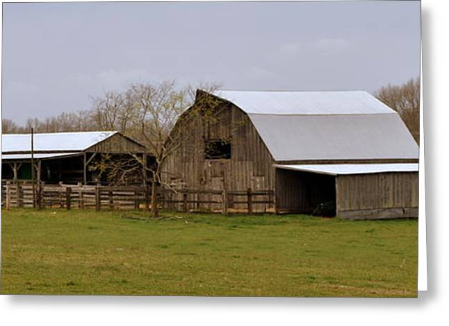 Marty Koch Greeting Cards - Barn in the Ozarks Greeting Card by Marty Koch