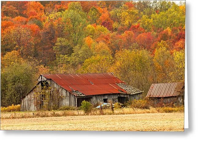 Red Roofed Barn Greeting Cards - Barn on McNary Rd rt.41 Greeting Card by Randall Branham