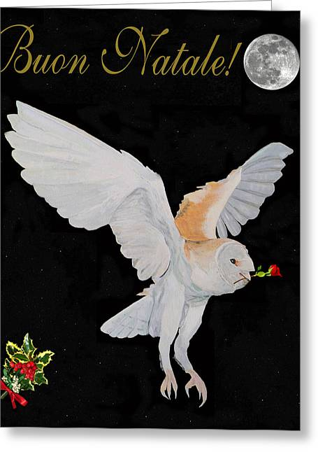 Acroplolis Greeting Cards - Barn Owl Buon Natale Merry Christmas Greeting Card by Eric Kempson