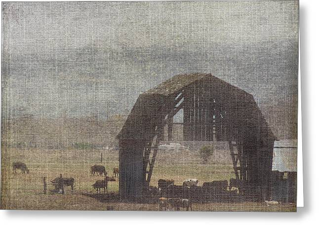 Barn Remnants Greeting Card by Cindy Wright