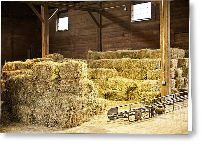 Hay Bales Photographs Greeting Cards - Barn with hay bales Greeting Card by Elena Elisseeva