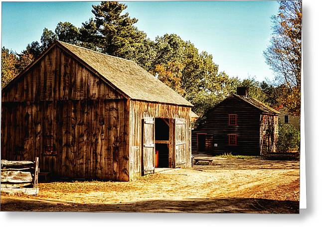 Barn Yard Greeting Cards - Barnyard Greeting Card by Tricia Marchlik