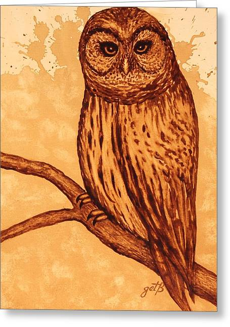Hunting Bird Greeting Cards - Barred Owl coffee painting Greeting Card by Georgeta  Blanaru