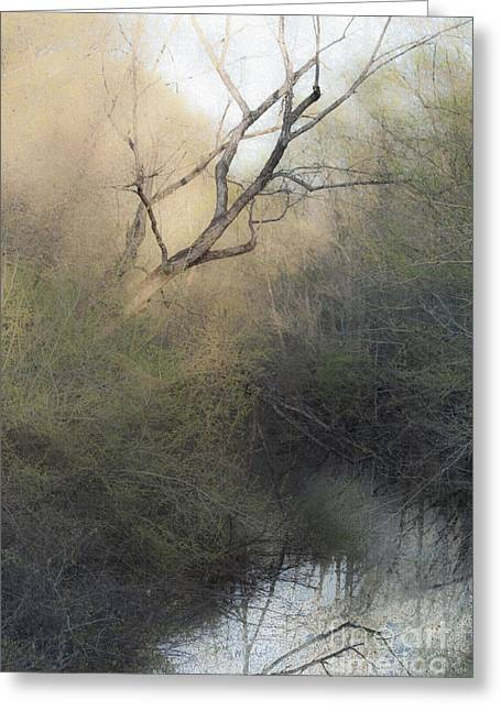 Water Bodies Of Texas Greeting Cards - Barren Beauty Greeting Card by Kim Henderson