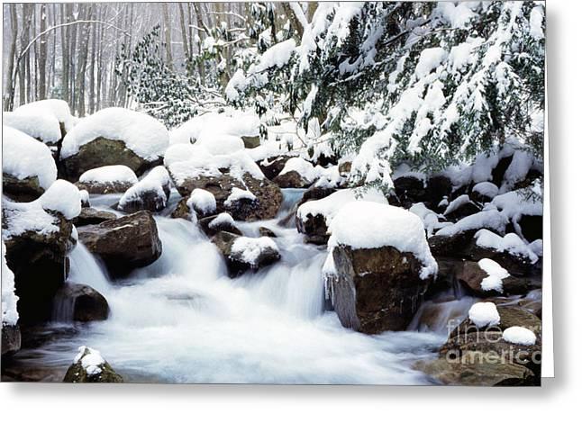 Rushing Stream Greeting Cards - Barrenshe Run in Winter Greeting Card by Thomas R Fletcher