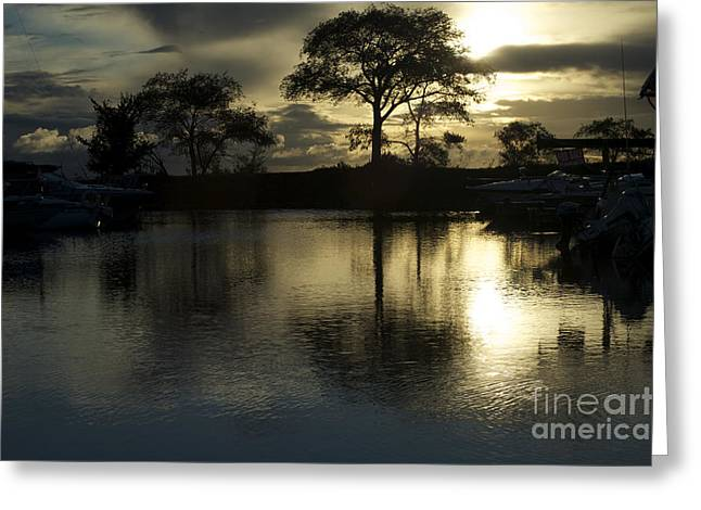 Barrie Greeting Cards - Barrie Harbour Sunrise Greeting Card by Elaine Mikkelstrup