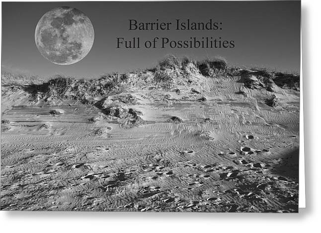 Barrier Island Greeting Cards - Barrier Islands Greeting Card by Betsy C  Knapp