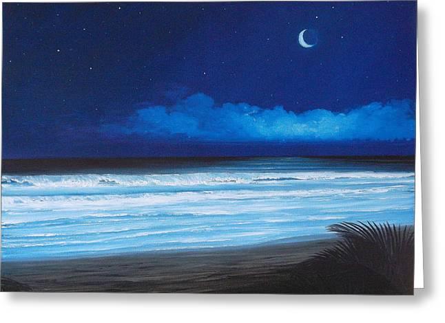 Barrys Beach Greeting Card by Delia Birnhak Swenson