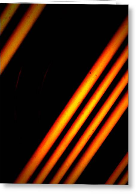 Edmonton Photographer Greeting Cards - Bars And Oranges Greeting Card by Jerry Cordeiro