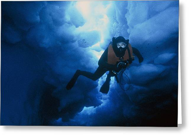 Diving Greeting Cards - Bas Research Diver Greeting Card by Doug Allan