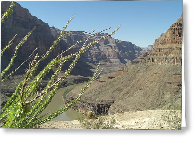 The Plateaus Digital Art Greeting Cards - Base Plateau at the Grand Canyon Greeting Card by Paul Jessop