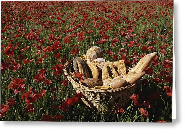 World Of Food Greeting Cards - Basket Of Bread In A Poppy Field Greeting Card by Nicole Duplaix