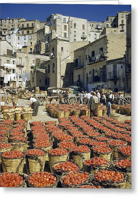 Real People Greeting Cards - Baskets Filled With Tomatoes Stand Greeting Card by Luis Marden