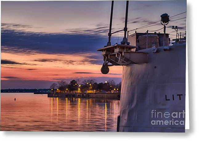 Basking Greeting Card by Chuck Alaimo