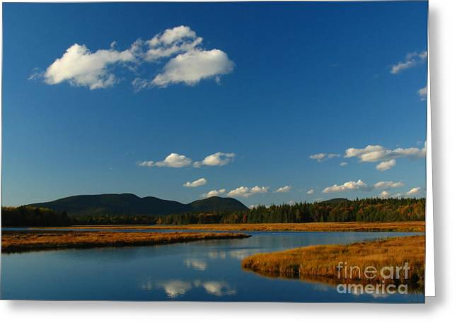 Maine Landscape Greeting Cards - Bass Harbor Marsh Greeting Card by Juergen Roth