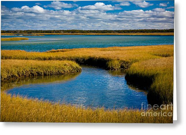 Colors Of Autumn Greeting Cards - Bass Hole Greeting Card by Susan Cole Kelly