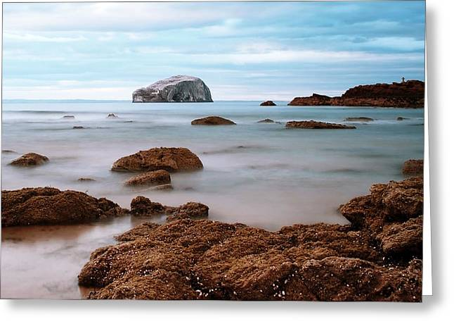 Bass Rock Greeting Card by Amanda Finan