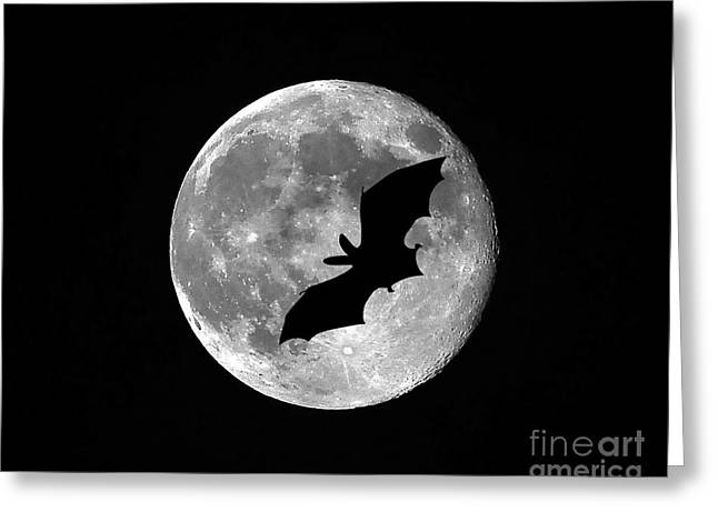 Creepy Digital Art Greeting Cards - Bat Moon Greeting Card by Al Powell Photography USA