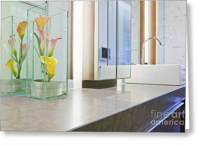 Artificial Flowers Greeting Cards - Bathroom Counter and Sink Greeting Card by Jeremy Woodhouse