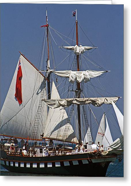 Historic Schooner Greeting Cards - Battle Of Queenston Heights 10 Greeting Card by Cyryn Fyrcyd