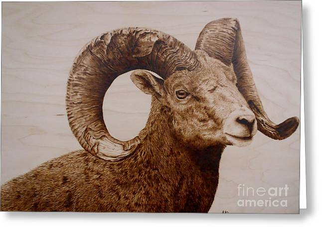 Horns Pyrography Greeting Cards - Battle Scarred Big Horn Ram Greeting Card by Adam Owen