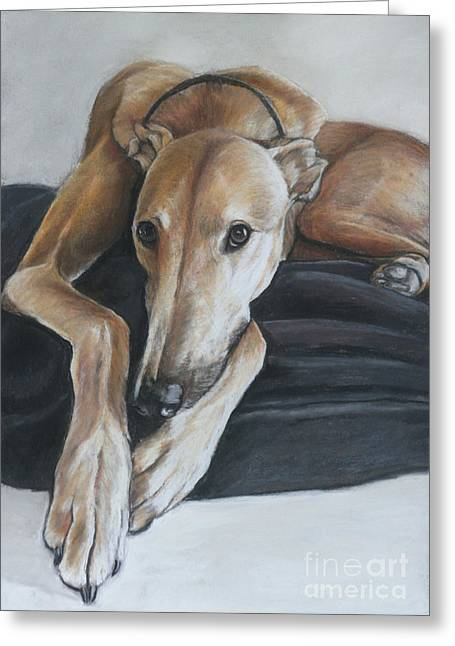 Rescued Greyhound Greeting Cards - Bauregard Greeting Card by Charlotte Yealey