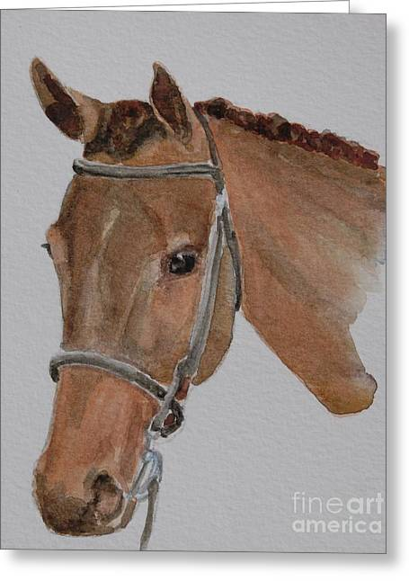 Watercolor. Equine. Bridle Greeting Cards - Bay Hunt Greeting Card by Gretchen Bjornson