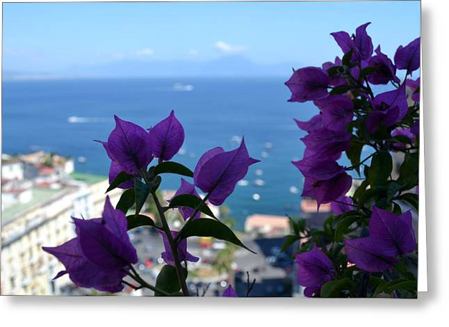 Naples Italy Greeting Cards - Bay of Naples Greeting Card by Terence Davis