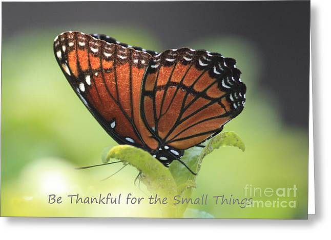 Be Thankful Greeting Card by Carol Groenen