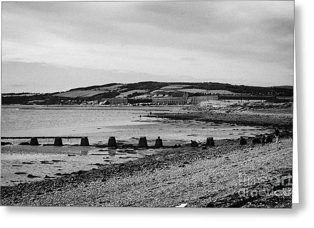 Fort George Greeting Cards - beach and shoreline between ardersier and fort george highland Scotland Greeting Card by Joe Fox