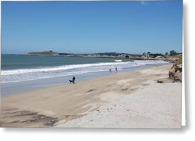 Beach At El Granada Greeting Card by Carolyn Donnell