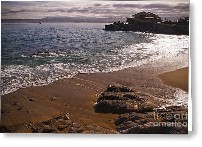Sunbathing Greeting Cards - Beach at Monteray Bay Greeting Card by Darcy Michaelchuk