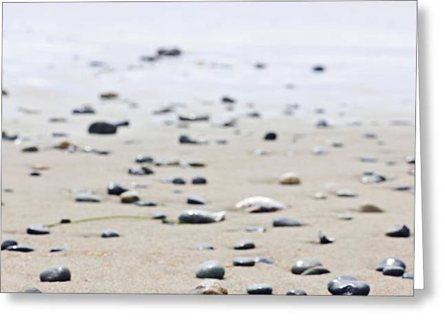 Beach detail on Pacific ocean coast of Canada Greeting Card by Elena Elisseeva