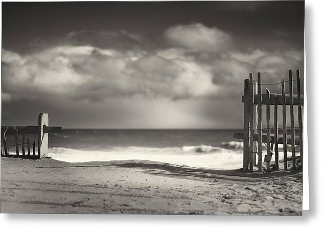 Ocean Black And White Prints Greeting Cards - Beach Fence - Wellfleet Cape Cod Greeting Card by Dapixara Art