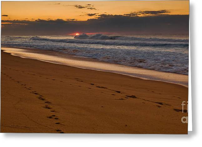Stock Greeting Cards - Beach footsteps at dawn Greeting Card by John Buxton