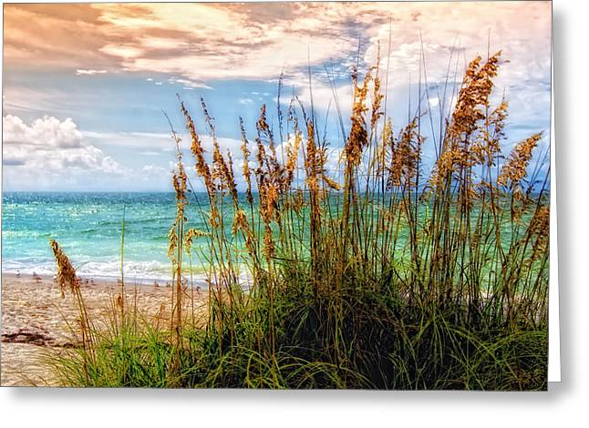 Ocean Greeting Cards - Beach Grass II Greeting Card by Gina Cormier