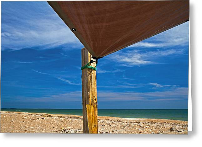 Leaned Greeting Cards - Beach Hangout Greeting Card by Betsy C  Knapp