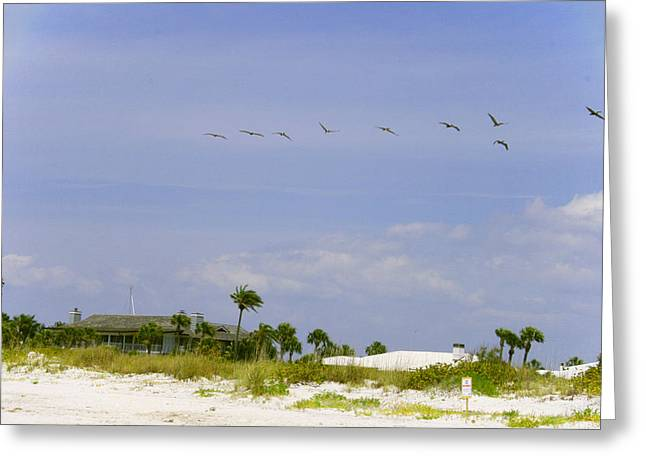 Florida House Greeting Cards - Beach house Greeting Card by Nomad Art And  Design