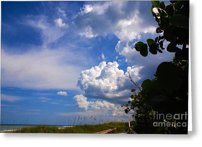 Florida East Coast Greeting Cards - Beach Magic Greeting Card by Susanne Van Hulst
