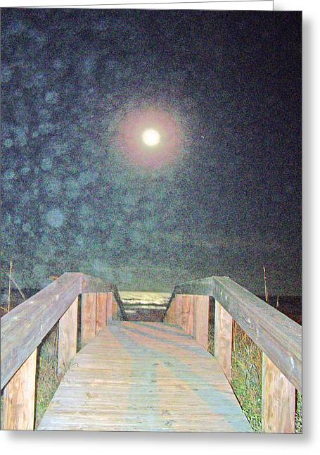 Patricia Taylor Greeting Cards - Beach Moonlight Magic Greeting Card by Patricia Taylor