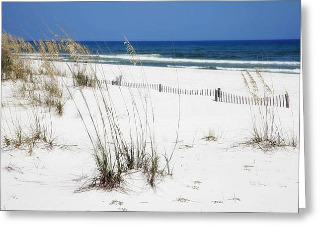 Beach No. 5 Greeting Card by Toni Hopper