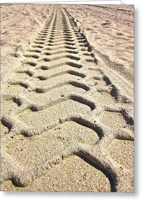 Tractor Tire Greeting Cards - Beach tracks Greeting Card by Gwyn Newcombe