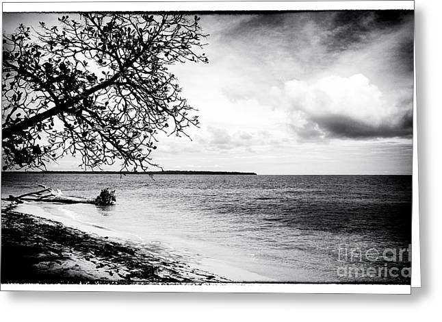 Old Home Place Greeting Cards - Beach View at Zapatillas Greeting Card by John Rizzuto