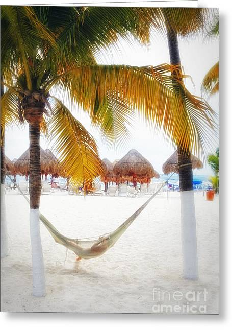 Beach Activities Greeting Cards - Beach View with a Hammock Greeting Card by George Oze