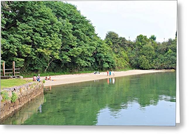 Jenny Senra Pampin Greeting Cards - Beach With Forest Greeting Card by Jenny Senra Pampin