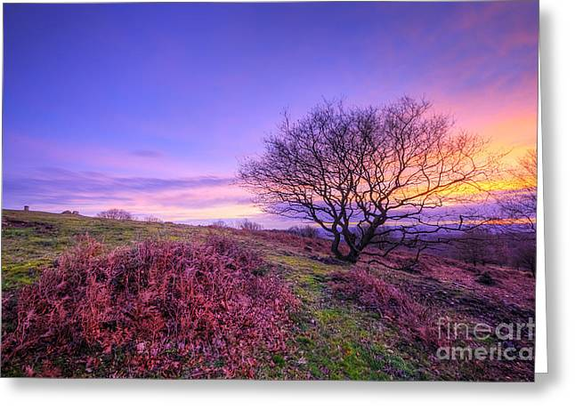 Hdr Landscape Greeting Cards - Beacon Hill Sunrise 1.0 Greeting Card by Yhun Suarez