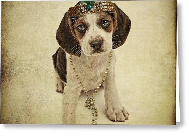 Beagle Puppy Flapper  Greeting Card by Susan  Schmitz