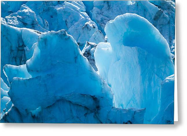 Crevasses Greeting Cards - Bear and Seal in Ice Greeting Card by Adam Pender